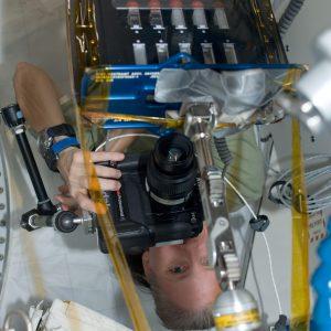 BCAT-5 experiment samples