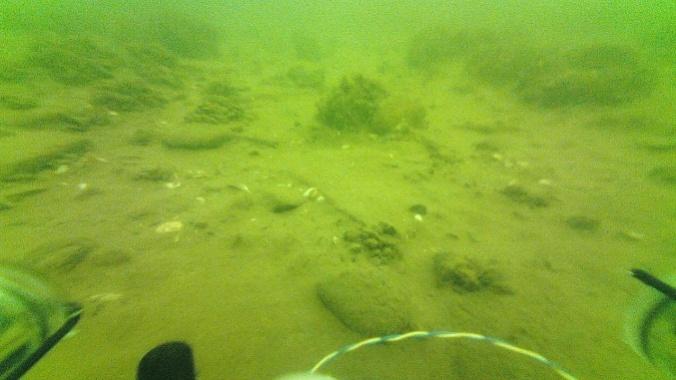 Lorain lake floor