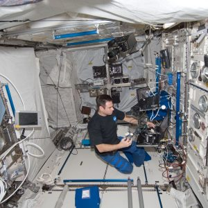 NASA astronaut Greg Chamitoff, Expedition 17 flight engineer, works with an experiment in the Columbus laboratory of the International Space Station.