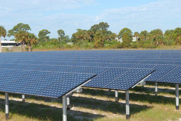 Picture of solar panel farm.